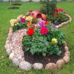 Клумба цветов