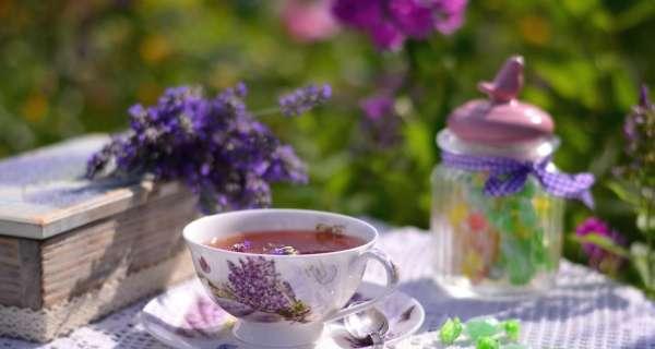 Пить чай втроём - познавать Чай.